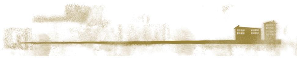 Barra del diseño sin contenido - Titular Splinters Novela Cuaderno de Colonia